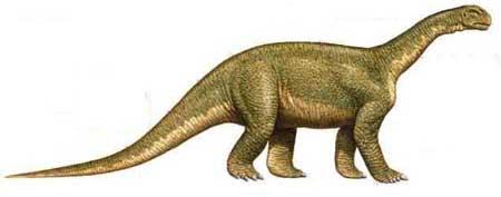 Camarasaurio