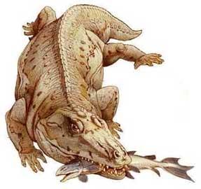 Hallan en Cuba restos fósiles de sirenios y cocodrilos gigan Eryops2